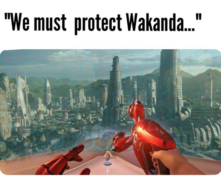 We must protect Wakanda
